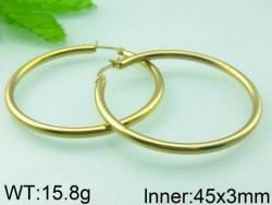 Stainless Steel Earrings for Women
